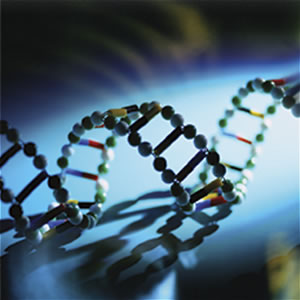 DNA horizontal blue